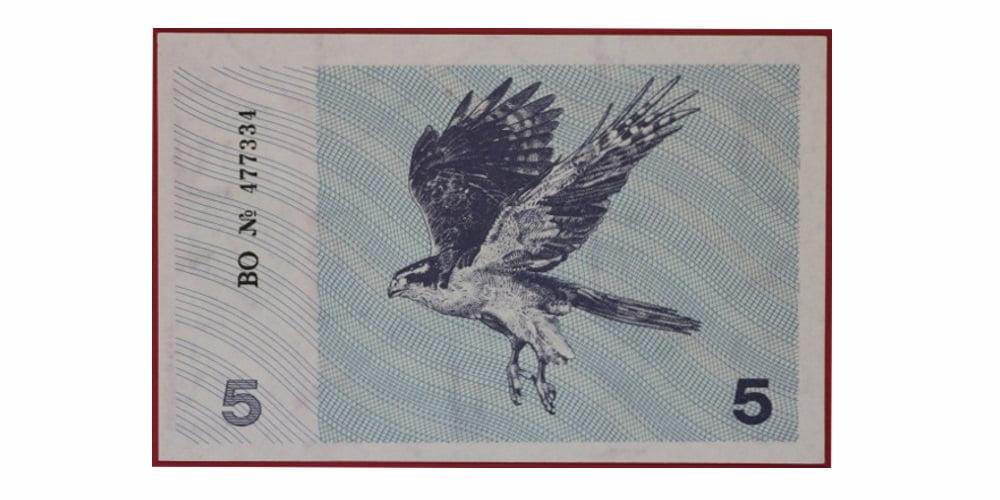 18676