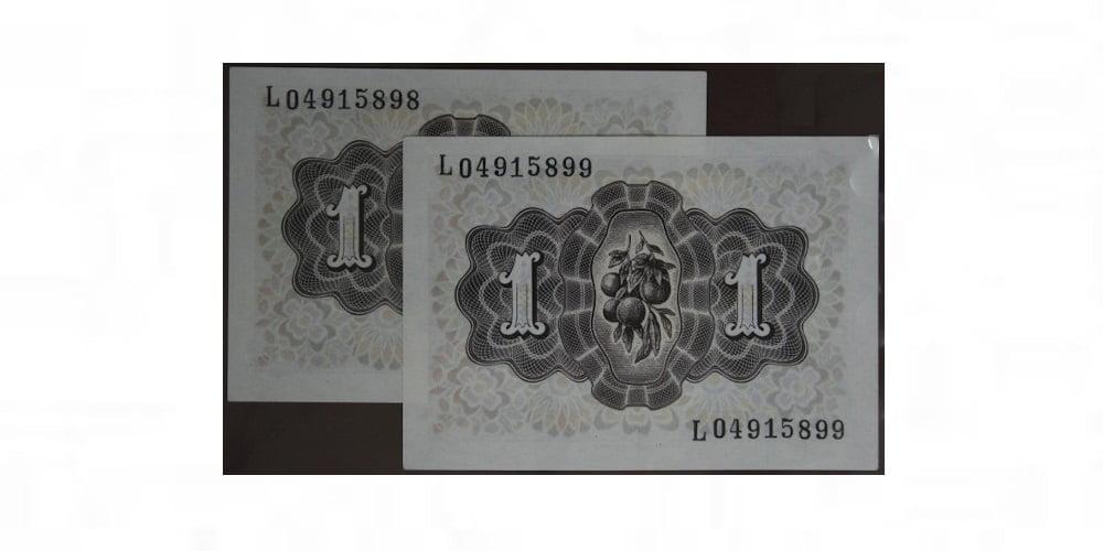 005905